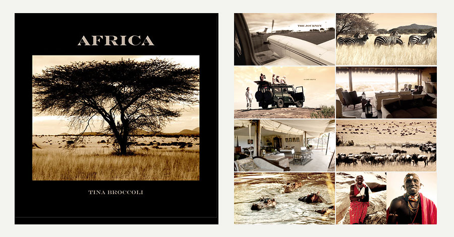 preview africa book by Tina Broccoli